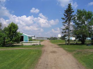 Photo 5: 231076 TWP 480: Rural Wetaskiwin County House for sale : MLS®# E4240854