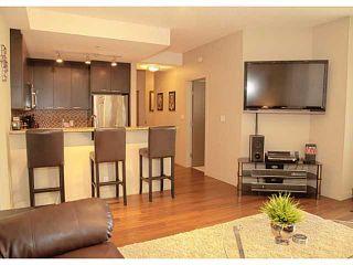 Photo 9: 207 333 22 Avenue SW in CALGARY: Mission Condo for sale (Calgary)  : MLS®# C3628832