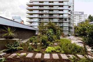 """Photo 11: 910 1708 COLUMBIA Street in Vancouver: False Creek Condo for sale in """"WALL CENTRE FALSE CREEK"""" (Vancouver West)  : MLS®# R2388986"""
