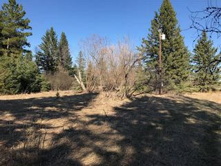 Photo 5: 0 83N Road in Brokenhead Rm: Vacant Land for sale : MLS®# 202001622