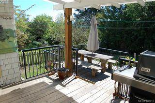 Photo 4: 3552 Calumet Ave in VICTORIA: SE Quadra House for sale (Saanich East)  : MLS®# 812576