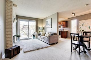 Photo 3: 5 123 13 Avenue NE in Calgary: Crescent Heights Apartment for sale : MLS®# A1106898