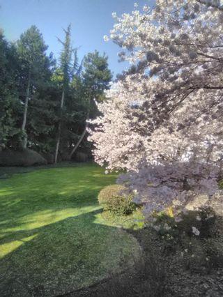 "Photo 34: 106 20976 56 Avenue in Langley: Langley City Condo for sale in ""RiverWalk"" : MLS®# R2539778"