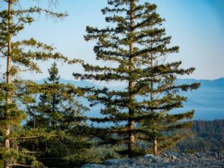 Photo 40: Proposed Lot 1 Clarkson Pl in : Sk Broomhill Land for sale (Sooke)  : MLS®# 850311