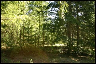 Photo 12: 21 6500 Southwest 15 Avenue in Salmon Arm: Panorama Ranch Vacant Land for sale : MLS®# 10230290