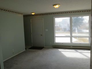 Photo 6: 208 4th Street in SOMERSET: Manitoba Other Residential for sale : MLS®# 1305544