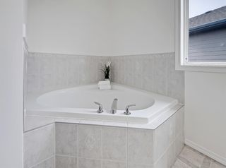 Photo 27: 157 Thornfield Close SE: Airdrie Detached for sale : MLS®# A1143092