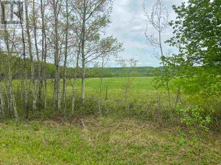 Photo 31: 15166 BUICK CREEK ROAD in Fort St. John (Zone 60): Agriculture for sale : MLS®# C8030416