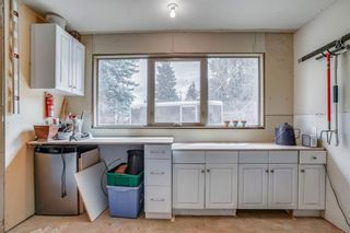 Photo 41: 3727 KERRYDALE Road SW in Calgary: Rutland Park Detached for sale : MLS®# C4220513
