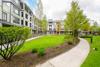 """Photo 12: 225 8880 202 Street in Langley: Walnut Grove Condo for sale in """"The Residences"""" : MLS®# R2396369"""