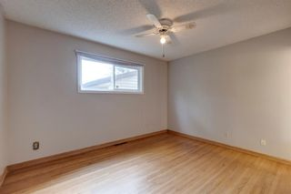 Photo 18: 2935 Burgess Drive NW in Calgary: Brentwood Detached for sale : MLS®# A1132281