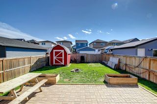 Photo 48: 180 Evanspark Gardens NW in Calgary: Evanston Detached for sale : MLS®# A1144783