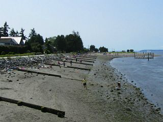 """Photo 55: 2826 MCBRIDE Avenue in Surrey: Crescent Bch Ocean Pk. House for sale in """"Crescent Beach"""" (South Surrey White Rock)  : MLS®# F1404362"""