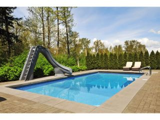 "Photo 46: 2911 146 Street in Surrey: Elgin Chantrell House for sale in ""ELGIN RIDGE"" (South Surrey White Rock)  : MLS®# F1425975"