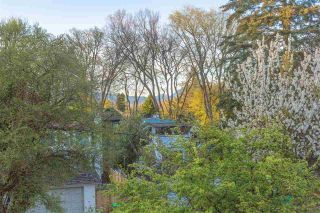 Photo 11: 3353 W 29TH AVENUE in Vancouver: Dunbar House for sale (Vancouver West)  : MLS®# R2161265