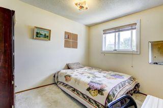 Photo 19: 267 Macewan Drive NW in Calgary: MacEwan Glen Detached for sale : MLS®# A1140518