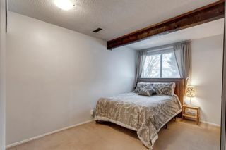 Photo 15: 105 Rundlewood Lane NE in Calgary: Rundle Semi Detached for sale : MLS®# A1060761