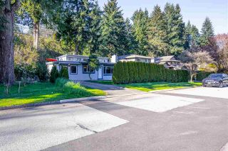 Photo 14: 1060 W 19TH Street in North Vancouver: Pemberton Heights House for sale : MLS®# R2567325