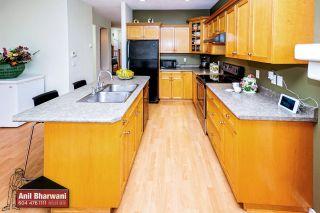 "Photo 49: 24113 102 Avenue in Maple Ridge: Albion House for sale in ""Homestead"" : MLS®# R2499816"