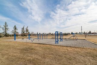 Photo 29: 4333 58 Street NE in Calgary: Temple Detached for sale : MLS®# A1092710
