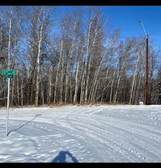 Photo 5: 5303 48 Street: Alix Residential Land for sale : MLS®# A1069835