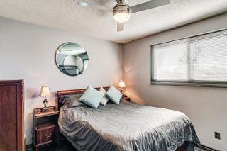 Photo 14: 2923 Doverville Crescent SE in Calgary: Dover Semi Detached for sale : MLS®# A1146625