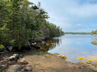 Photo 3: Scott's Point Road in East Dover: 40-Timberlea, Prospect, St. Margaret`S Bay Vacant Land for sale (Halifax-Dartmouth)  : MLS®# 202121077