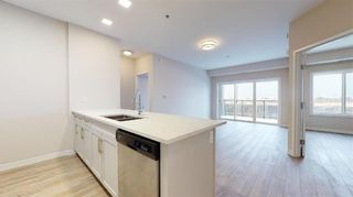 Photo 14: PH11 399 Stan Bailie Drive in Winnipeg: South Pointe Rental for rent (1R)  : MLS®# 202121858