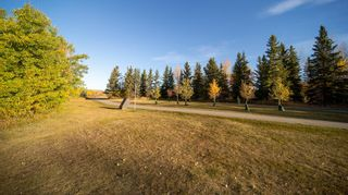 Photo 34: 6219 Louise Road SW in Calgary: Lakeview Detached for sale : MLS®# A1064256