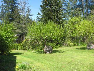 Photo 44: 1006 Sayward Rd in SAYWARD: NI Kelsey Bay/Sayward House for sale (North Island)  : MLS®# 813806