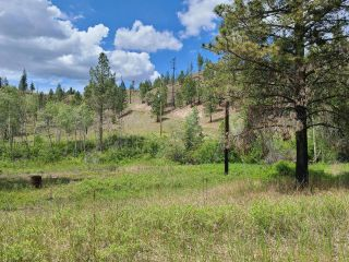 Photo 8: 1284 RENSCH ROAD: Loon Lake Lots/Acreage for sale (South West)  : MLS®# 162651