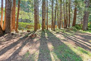 Photo 23: 7825 Little Way in : CV Union Bay/Fanny Bay House for sale (Comox Valley)  : MLS®# 874749
