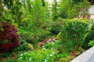 """Photo 19: 1820 FULTON Avenue in West Vancouver: Ambleside House for sale in """"Ambleside"""" : MLS®# R2577844"""
