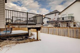Photo 30: 10 PRAIRIE SPRINGS Bay SW: Airdrie Detached for sale : MLS®# C4285641