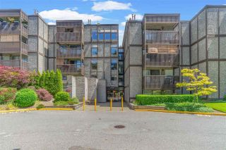 """Photo 6: 415 9672 134 Street in Surrey: Whalley Condo for sale in """"PARKWOOD-DOGWOOD"""" (North Surrey)  : MLS®# R2591270"""