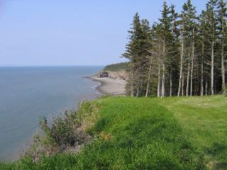 Photo 6: Lot 17 Augsburger Street in Victoria Harbour: 404-Kings County Vacant Land for sale (Annapolis Valley)  : MLS®# 202010554
