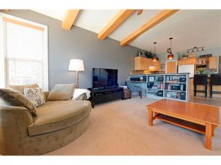 Photo 18: 94 SIMCOE Circle SW in Calgary: Signature Parke House for sale : MLS®# C4006481