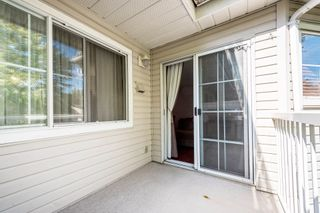 """Photo 16: 312 2678 DIXON Street in Port Coquitlam: Central Pt Coquitlam Condo for sale in """"The Springdale"""" : MLS®# R2307158"""