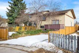 Photo 1: 128 Dovertree Place SE in Calgary: Dover Semi Detached for sale : MLS®# A1075565