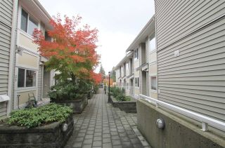 Photo 14: 11 7136 18TH Avenue in Burnaby: Edmonds BE Townhouse for sale (Burnaby East)  : MLS®# R2318561