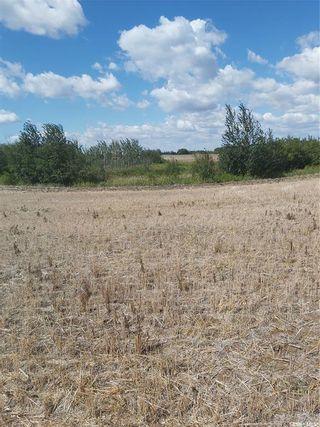 Photo 1: Rystrom Acreage in Corman Park: Lot/Land for sale (Corman Park Rm No. 344)  : MLS®# SK866589