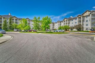 Photo 22: 337 1717 60 Street SE in Calgary: Red Carpet Apartment for sale : MLS®# A1067174