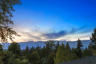 "Photo 19: 10525 MCVEETY Street in Maple Ridge: Albion House for sale in ""Kanaka Creek"" : MLS®# R2613602"