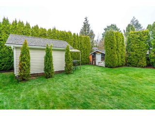 """Photo 34: 3378 198 Street in Langley: Brookswood Langley House for sale in """"Meadowbrook"""" : MLS®# R2555761"""