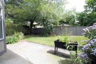 """Photo 11: 19 4740 221 Street in Langley: Murrayville Townhouse for sale in """"Eaglecrest"""" : MLS®# R2383487"""