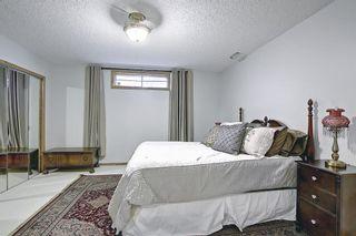 Photo 37: 318 Hawkside Mews NW in Calgary: Hawkwood Detached for sale : MLS®# A1082568