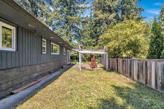 Photo 29: 11410 207 Street in Maple Ridge: Southwest Maple Ridge House for sale : MLS®# R2587693