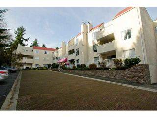 """Photo 1: 332 1441 GARDEN Place in Tsawwassen: Cliff Drive Condo for sale in """"MAGNOLIA"""" : MLS®# V1086554"""