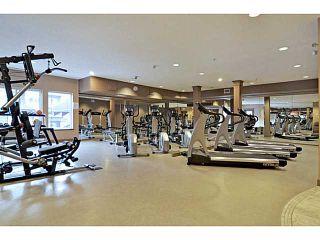 Photo 13: 539 10 DISCOVERY RIDGE Close SW in CALGARY: Discovery Ridge Condo for sale (Calgary)  : MLS®# C3596343