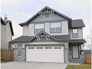 Photo 20: 311 ROYAL BIRCH Bay NW in Calgary: Royal Oak Residential Detached Single Family for sale : MLS®# C3642313